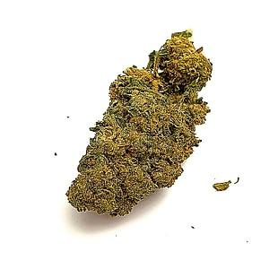 Buddah skunk